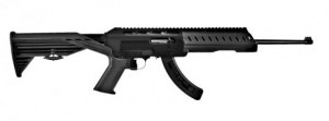 Slide Fire 1022 Stock SSAR-22 www.1022ruger.com